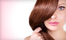 $51 for Demi-Permanent Hydrating Color Gloss with Haircut at Hair Station