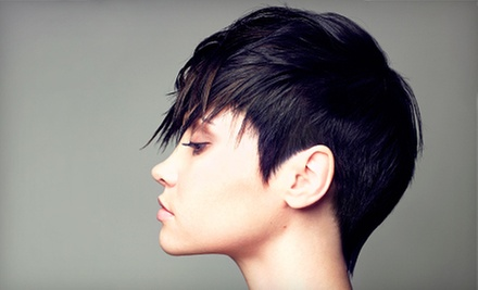 $26 for a Wash and Blow Dry at Papillon Hair Salon