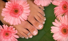 $25 for Color Gel Shellac Manicure at Lily's Nail Salon