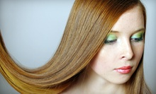 $17 for Organic Spray Tan at Hair Ambition