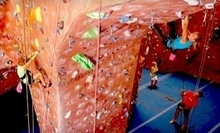 $7 for All Day Pass at Climbx