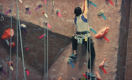 $10 for Clip'n Go Pass at Adventure Rock Indoor Climbing Gym