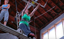 $37 for a 10am Beginner Flying Trapeze Class at Emerald City Trapeze Arts