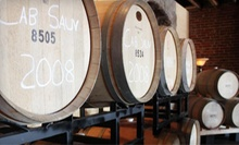$30 for 4 Glasses of Wine and 1 Bottle of Your Choice  at Silver Vines Winery