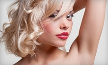 $65 for a Haircut and Partial Highlight at Bliss Salon & Day Spa