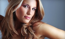 $69 for a Haircut &amp; Full Highlights at A Cut Above New York