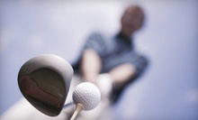 $59 for a 60 Minute Swing Assessment at Striker Golf