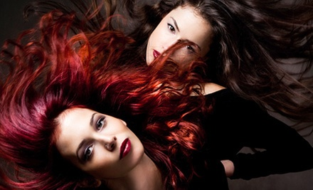 $70 for Spa Color & Blow Dry at Robert's Salon and Spa