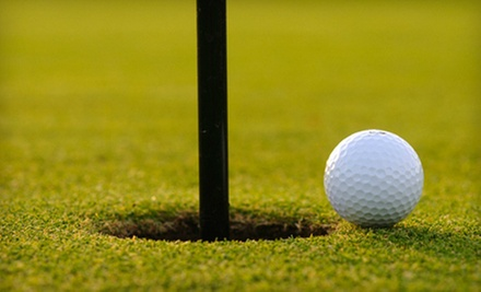 $32 for One Round of Indoor Golf at Pinnacle Indoor Golf Center