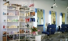 $95 for a Haircut, Partial Highlight, Toner, and Deep Conditioning at Panache2 Hairdressing
