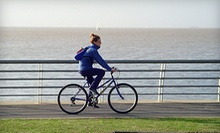 $10 for a Two-Hour Bicycle Rental  at Lakeshore Bike