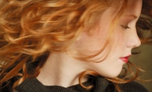 $35 for a Wash, Cut, Style & Redken Conditioning Treatment  at The Snippery Hair Studio