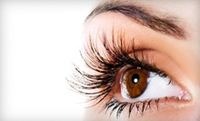 $20 for  Brow Tinting and Brow Shaping at Miss Knockout