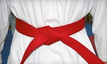 $10 for 8 am Introduction Class at Harlem Tae Kwon Do