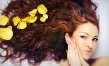 $19 for a Women's Wash, Cut, Blow Dry and Style at Lilac Spa
