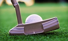 $29 for a 45-Minute Golf Lesson at A.Lee Golf Lessons