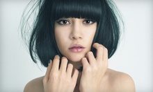 $29 for a Haircut, Conditioning Treatment &amp; Blow Dry at Jason B William Salon