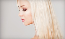 $80 for Partial Highlights and Cut at Studio D by Dejan Dimkovski