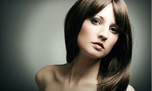 $75 for a Haircut, Highlights and Eyebrow Wax at Beauty Bar Hair Salon