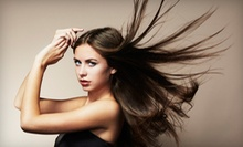 $35 for a Partial Highlight, Cut, Style, Wash &amp;amp; Deep Conditioning at DiGiovanni Beauty Salon