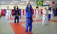 $20 for 12 PM Brazilian Jiu Jitsu Class at Alliance Martial Arts