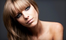 $51 for a Cut, Partial Lowlights and Blowdry at Salon Studio and Spa