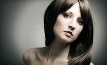 $75 for Partial Highlights with a Haircut and Style at Porcelain Hair Studio