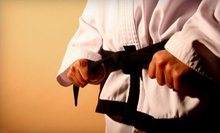 $10 for a 5:30 p.m. Intro to Karate Class at USA Karate