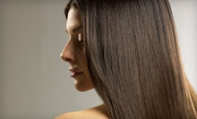 $65 for a Single Process Color, Hair Treatment, Haircut & Blowout at De Lis Salon