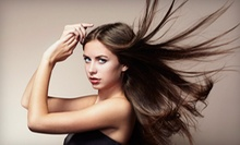 $168 for Single Process, Partial Highlight, Cut & Deep Conditioning at Sorelle Organic Salon and Spa