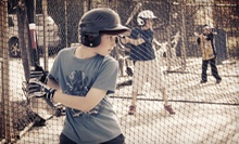 $25 for 1 Hr. of Batting Cages w/ Bat/Helmet Rental, Cards, and DVD at All-Star Baseball School