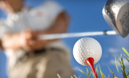 $35 for a Dynamic Loft and Lie Golf Fitting at Blind 9 Golf
