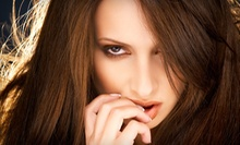 $80 for Highlights, Haircut, Style &amp; Deep Conditioner at Aria Salon Dallas