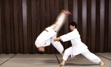 $5 for 5:45 pm Adult Aikido Class at Peninsula Odd Fellows Aikido