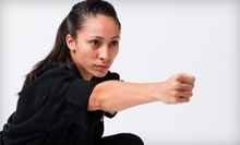 $4 for a Blend 1 and 2 Class at 7:15 p.m.  at Degerberg Academy of Martial Arts
