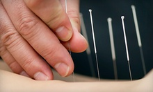 $69 for an Acupuncture Treatment and Shoulder-And-Neck Massage at Heather Lounsbury, L.Ac.