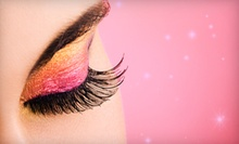 $60 for an Eyelash Extension at Sani Spa &amp; Nails