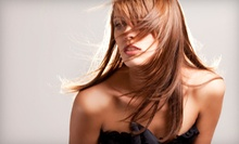 $39 for a Cut, Blowout and Gloss at The Loft At Dawchers