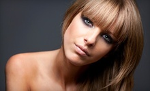 $75 for Highlights, Cut & Style at Roman Hair Salon