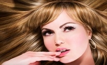 $45 for Haircut and Style at Salon de Vive