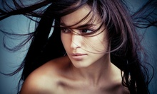 $79 for a Cut, Color, and Style at Hair by Dedi