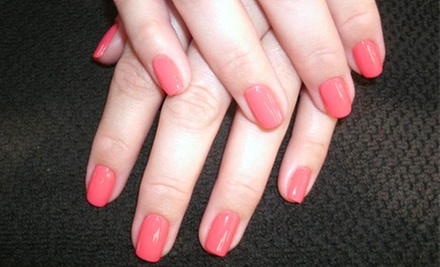 $16 for  a Shellac Manicure at Envidia Nails