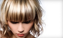 $88 for Full Highlights, Haircut and Style at Panache Studio