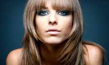 $40 for $75 Worth of Hair Services at Salon 206