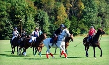 $45 for 60-Minute Introductory Group Polo Class at 10 a.m. at Stage Hill Polo