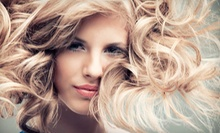 $70 for a Haircut, Style, Highlights, and Colour  at ProHair Care Salon