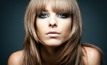 $58 for a Color Touch-Up, Wash, Cut, and Blowdry at DNicole Salon and Spa