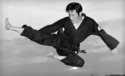 $10 for 1:00 p.m. Kung Fu & Tai Chi Class at The School of Oom Yung Doe
