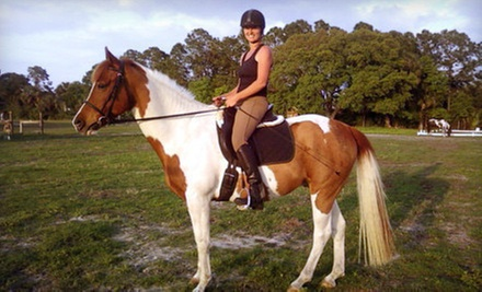 $25 for a 3 p.m. Introductory Group Horse-Riding Lesson at Hidden Acres Equestrian Center