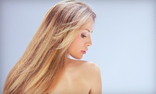 $42 for Blow Out, Roller Wrap, Deep Conditioner and Trim at Tim's Healthy Hair Care Center